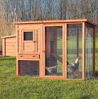 How To Build A Pigeon Coop